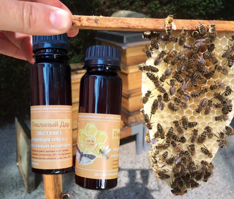 лечение простатита пчела продуктами